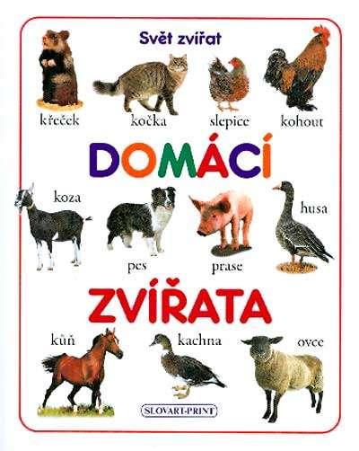 zvířata
