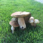 Anežka - houby 10 (1)